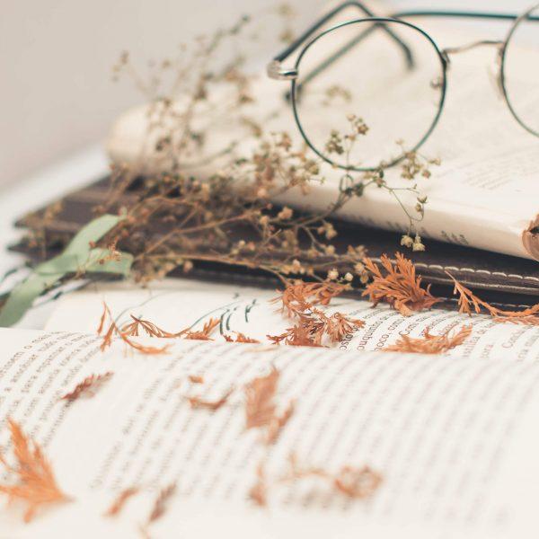15 Spooky Romance Books To Read This Halloween Season
